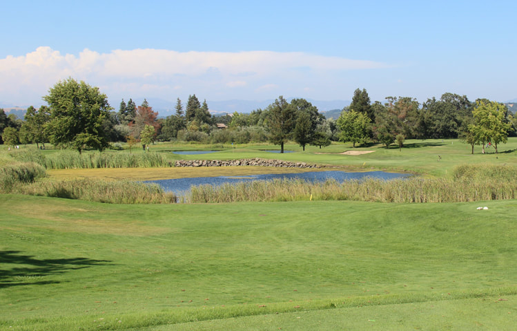 Windsor Golf Course Review Picture